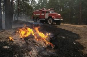 В Ярцевском районе горел лес