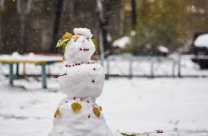 В воскресенье выпадет первый снег