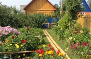 В октябре на Смоленщине будут награждать ветеранов за лучшие сады и огороды