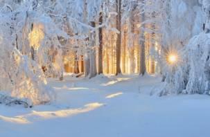 Климатолог РАН: зима в этом году может наступить заметно позже