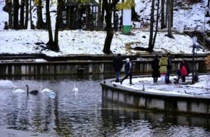 Реки Смоленской области будут подниматься на 6 см в сутки