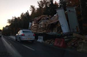 Смоляне стали свидетелями жуткой аварии на трассе «Москва-Минск»