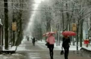 В пяти регионах ЦФО выпал снег