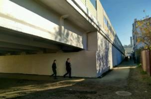 Под Беляевским путепроводом в Смоленске станет светлее