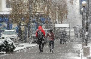 В четверг на Смоленщине ожидается метель и мороз