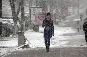 Россиянам пообещали зиму с ледяными дождями