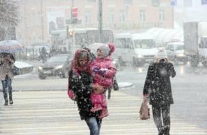 Желтый уровень погодной опасности из-за сильного ветра объявили в ЦФО