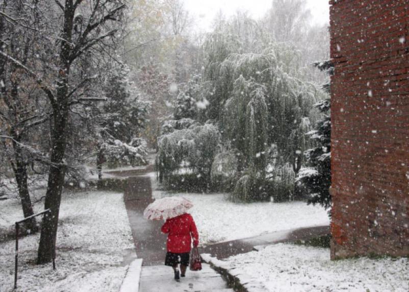 Завтра весна. За похолоданием в ЦФО придет оттепель