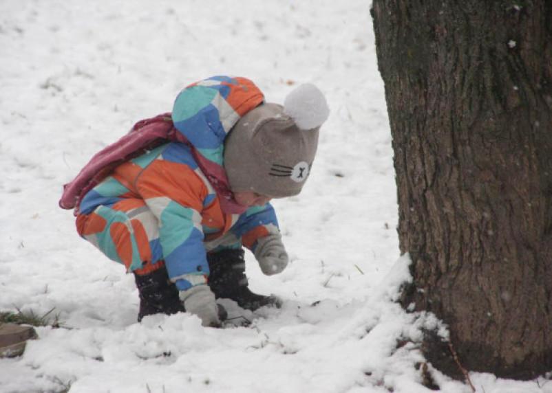 Смоленскую область заметет. Какая погода ждет россиян в январе