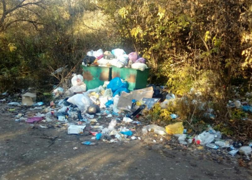 Смоляне жалуются на отсутствие мусорных контейнеров