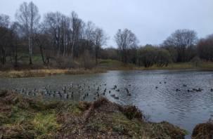 Солдатское озеро в Смоленске превращается в помойку
