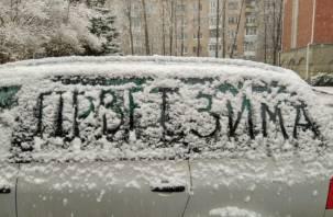 Синоптики прогнозируют в ЦФО «вишневую» зиму