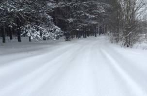 Неизвестные на снегоходах застрелили четырех косуль в Починковском районе