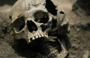 Возле памятника в Смоленске заметили человеческие кости и черепа