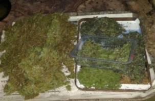Полиция обнаружила в доме у смолянина килограммы наркотиков