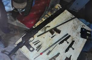 В Смоленской области «чёрный копатель» попался с арсеналом оружия. Видео задержания появилось в Сети