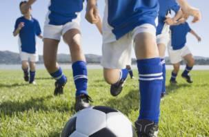Футбол может привести к нарушению деятельности мозга у детей