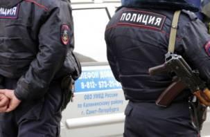 В самом центре Санкт-Петербурга задержан смолянин с боеприпасами в кармане