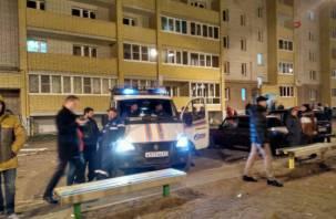 Что произошло в Пригорском. Официальный комментарий МЧС и замгубернатора