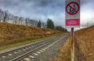 Не было аналога. Запущены новые белорусские поезда в Россию
