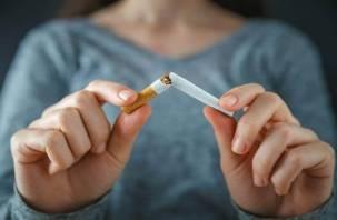 Госдума запретила свободные перевозки более 200 сигарет