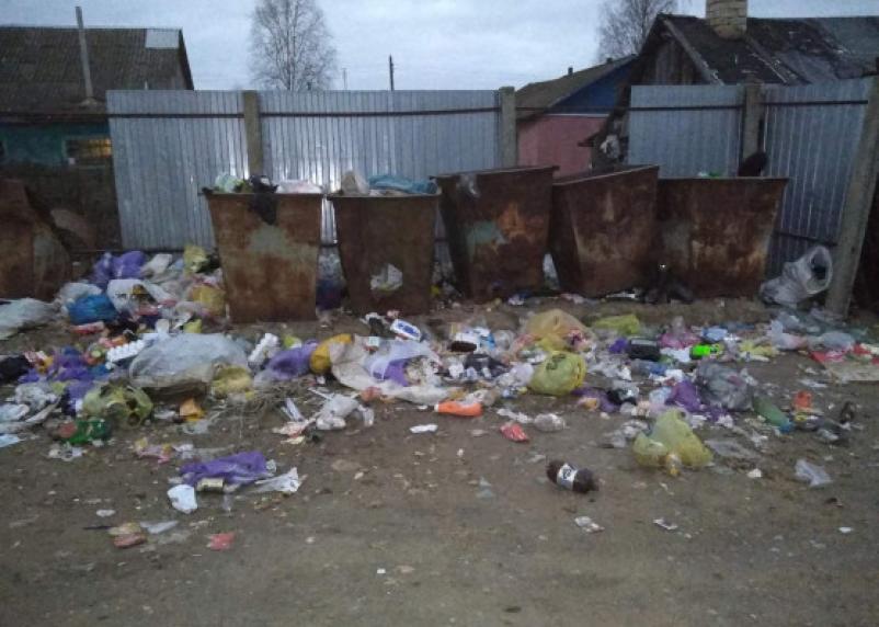 В РФ озвучили проблемы при утилизации мусора