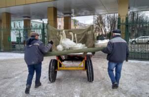 В Смоленске лебедей из Лопатинского сада отправили на зимовку