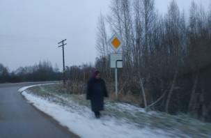 В Смоленском районе иномарка сбила женщину на обочине дороги
