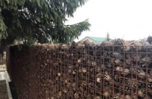 Смолянка построила живой «дышащий» забор