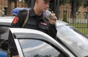 Смоленские бойцы Росгвардии поймали преступников, находящихся в розыске