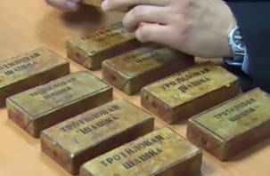 В Починковском районе обнаружили более 600 тротиловых шашек
