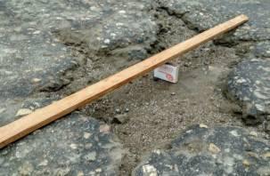 Дорога жизни или смерти. Жители Соловьиной рощи бьют тревогу по аварийному участку дороги