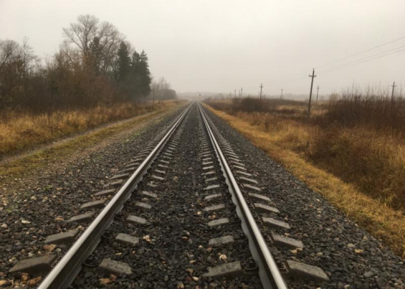 Два человека погибли. Легковушка столкнулась с поездом в Смоленской области