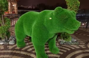Смоленский мэр обещает «привезти» в Смоленск зеленых медведей