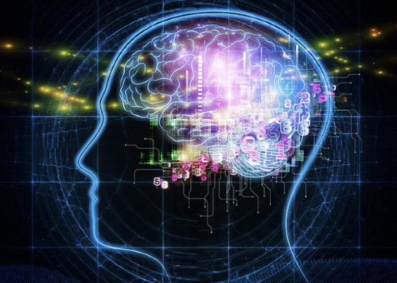 Названа супердиета для работоспособности мозга