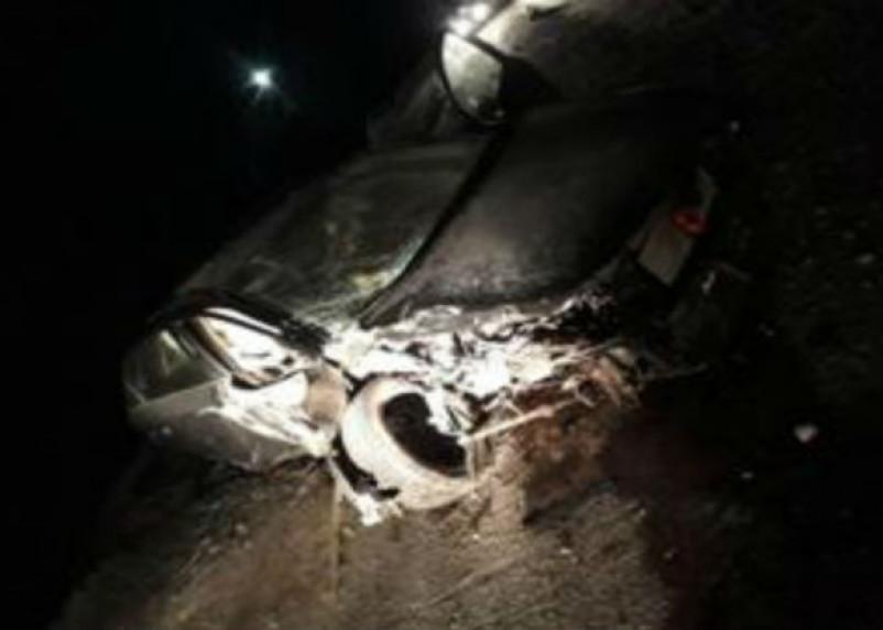 ВАЗ протаранил дерево в Ярцеве. Два человека госпитализированы
