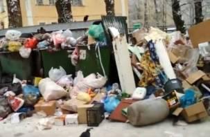 Подсуетились: после публикации на Smolnarod.ru коммунальщики убрали помойку