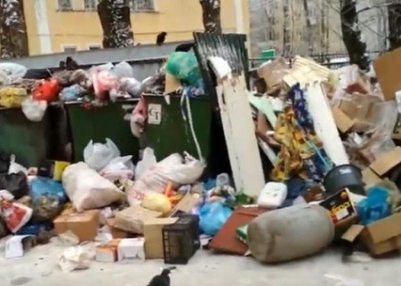 В Смоленске улица утопает в мусоре с переполненной помойки
