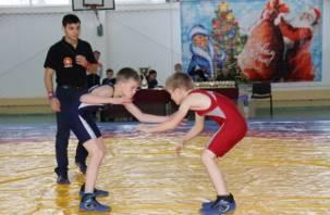 На Смоленщине прошел Новогодний турнир по вольной борьбе среди школьников