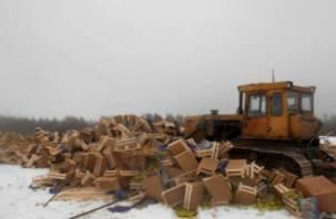 На Смоленщину пытались «под прикрытием» ввезти более 22 тонн груш