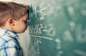 «Совам» проще. Как повысить успеваемость школьников