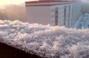 Тепло закончилось. Россиян предупредили о метели и морозах