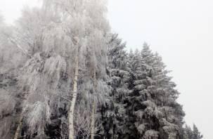 Россиянам пообещали «марсианскую погоду» и сибирские морозы