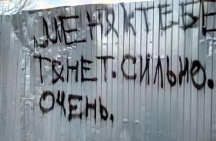 В Смоленском районе с дачи исчезли 500 кг металла