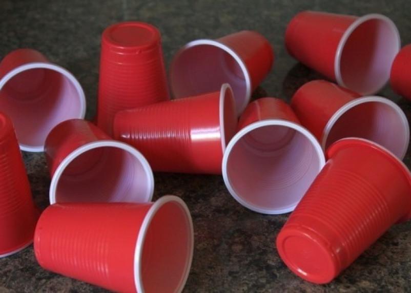 Депутаты предложили отказаться от пластиковой посуды на массовых мероприятиях