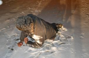 В Глинке Ауди раздавила мужчину