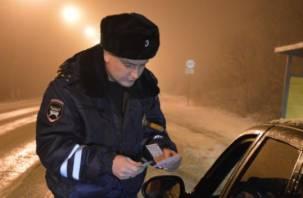 В Смоленске проведут «сплошные проверки» водителей