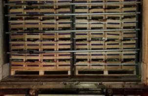На окружной Смоленска таможенники задержали фуры с 80 тоннами «санкционки»