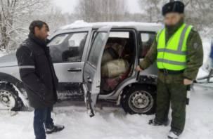 Смоленские пограничники поймали нелегального молочника из Беларуси