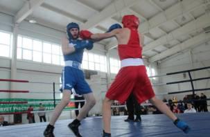 В Смоленске состязались лучшие боксеры области